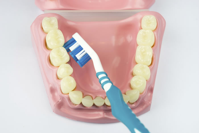 oral health - how to brush your teeth
